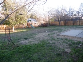 2012: Our yard provides food and cover for birds in the corners, but leaves a lot of area open and usable for things like baseball practice.